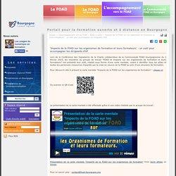 'Impacts de la FOAD sur les organismes de formation et leurs formateurs' : un outil pour accompagner les dirigeants d'OF