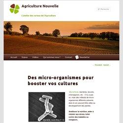 Micro-organismes pour booster vos cultures/ En agriculture on utilise des bactéries et des mycorhizes, pour améliorer la fertilisation économiser de engrais et aider les plantes à lutter contre les maladies et les stress