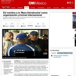 EU nombra a la 'Mara Salvatrucha' como organización internacional criminal