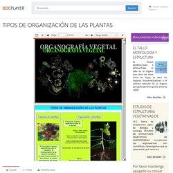 TIPOS DE ORGANIZACIÓN DE LAS PLANTAS - PDF Free Download
