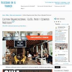 Cultura Organizacional: ¡Guía, Pasos y Ejemplos Prácticos!
