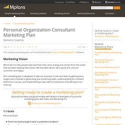 Personal Organization Consultant Sample Marketing Plan - Marketing Vision