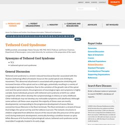 Tethered Cord Syndrome - NORD (National Organization for Rare Disorders)