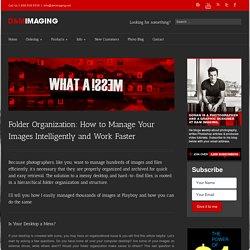 Folder Organization: What I Learned at Playboy Enterprises.