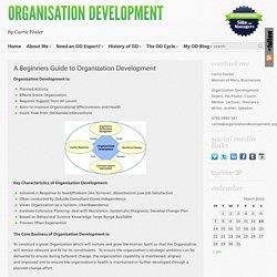 A Beginners Guide to Organization Development « Organisation Development