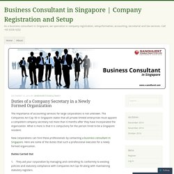 Why to hire a Business Consultant in Singapore