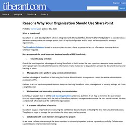 Reasons Why Your Organization Should Use SharePoint