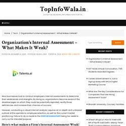 Organization's Internal Assessment – What Makes It Weak?