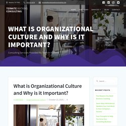 What is Organizational Culture and Why is it Important? Termite Watkins