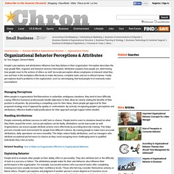 Organizational Behavior Perceptions & Attributes