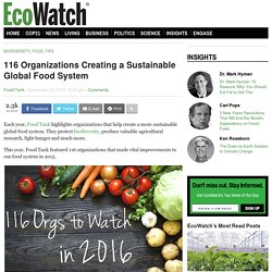 116 Organizations Creating a Sustainable Global Food System