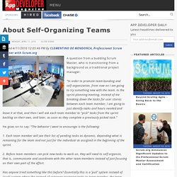 About Self Organizing Teams/