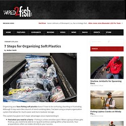 7 Steps for Organizing Soft Plastics « Wired2Fish