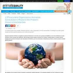 L'Efficacia delle Organizzazioni Animaliste: Come Aiutare a Risolvere Vari Problemi Globali in Una Volta Sola