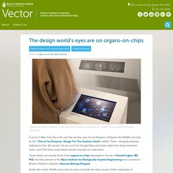 Organs-on-chips meld art and science