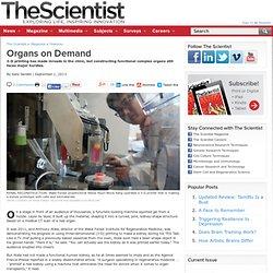 The Scientist Magazine® - Nightly