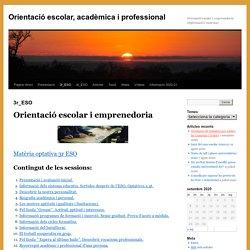 Orientació escolar, acadèmica i professional