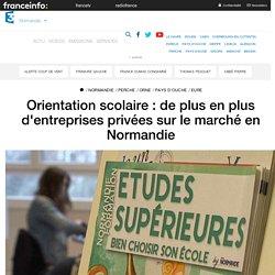 Orientation scolaire : de plus en plus d'entreprises privées sur le marché en Normandie - France 3 Normandie