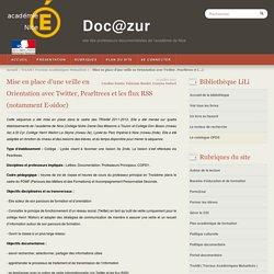 Veille en Orientation avec Twitter, Pearltrees et les flux RSS - documents associés