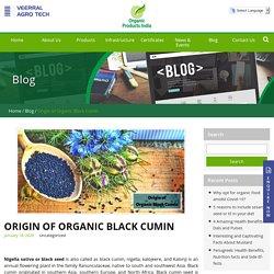 Origin of Organic Black Cumin