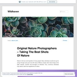 Original Nature Photographers – Taking The Best Shots Of Nature