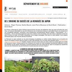 De l'origine du succès de la Renouée du Japon — Département de Biologie