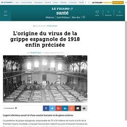 L'origine du virus de la grippe espagnole de 1918 enfin précisée