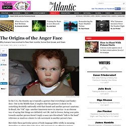 The Origins of the Anger Face