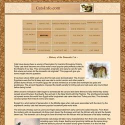 Origins of the Domestic Cat