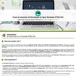 Orléans informatique : cours informatique Terminale STMG SIG