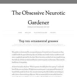 Top ten ornamental grasses - The Obsessive Neurotic Gardener