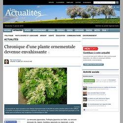 Chronique d'une plante ornementale devenue enva...