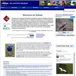 Avibase - La base ornithologique mondiale