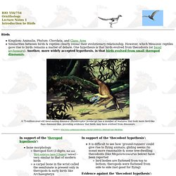 Ornithology Lecture Notes 1 - Introduction to Birds & Flight