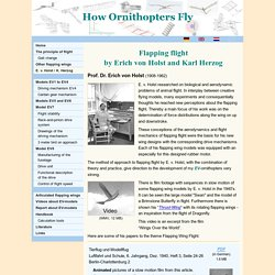How Ornithopters Fly - Erich von Holst and Karl Herzog