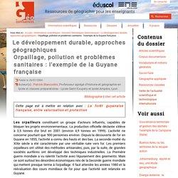 Orpaillage, pollution et problèmes sanitaires : l'exemple de la Guyane française