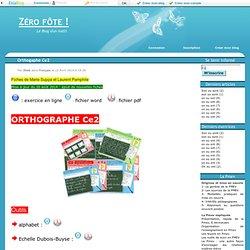 Orthogaphe Ce2