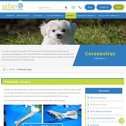 Low-Cost Orthopedic Surgery Hospital for the pet in Texas.