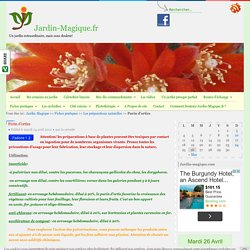 Purin d'orties - Jardin-Magique.fr - jardiner malin