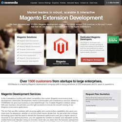 Custom Magento Ecommerce Store Development