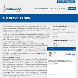 The Pelvic Floor - B Enhanced Health
