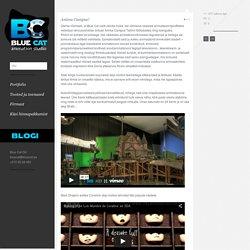 Animatsioonide, telereklaamide, õppevideode valmistamine - Blue Cat OÜAnimatsioonide, telereklaamide, õppevideode valmistamine – Blue Cat OÜ