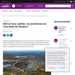 """CO2 et virus oubliés : le permafrost est """"une boîte de Pandore"""""""