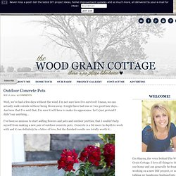 Outdoor Concrete Pots - The Wood Grain Cottage