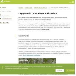 La page outils : IdentiPlante et PictoFlora
