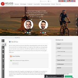 Wordpress Ontwikkeling