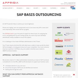 SAP Basis Support Services @Apprisia