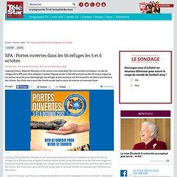 SPA : Portes ouvertes dans les 56 refuges les 5 et 6 octobre