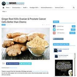 Ginger Root Kills Ovarian & Prostate Cancer Cells Better than Chemo
