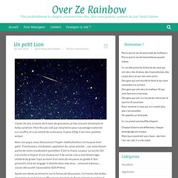 Over Ze RainbowUn petit Lion - Over Ze Rainbow